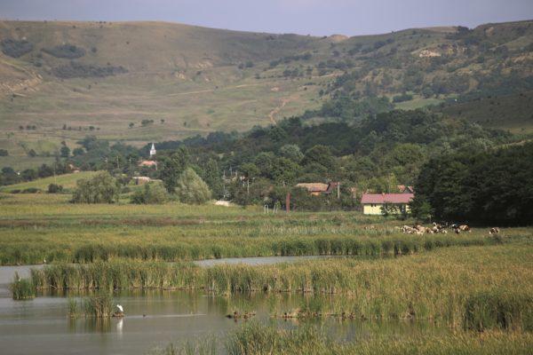 Mezőségi táj