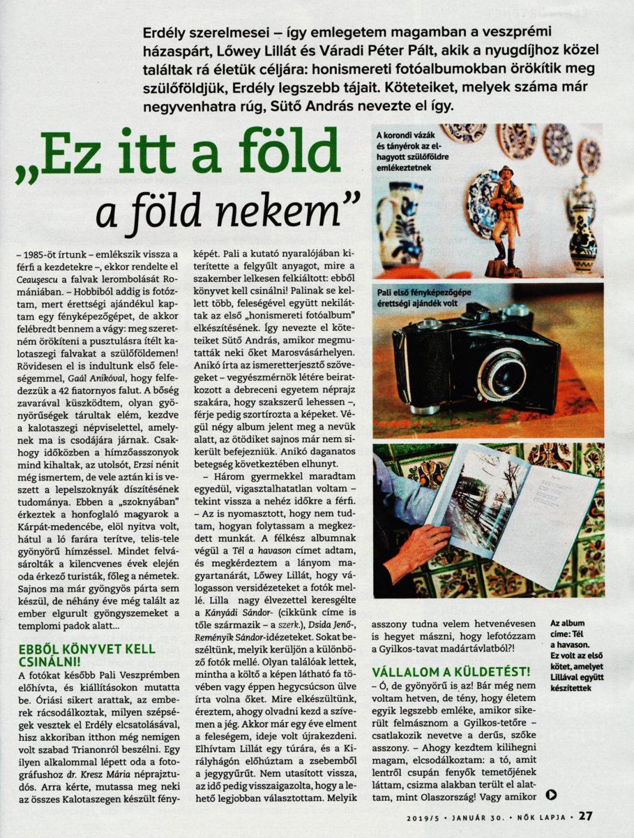 A Nök Lapja cikke, Koronczay Lilla írása