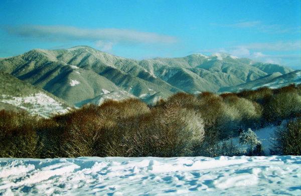 Máramarosi-havasok