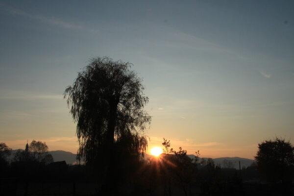 Hajnali fények