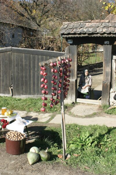 Kibéd - biozöldség a ház előtt