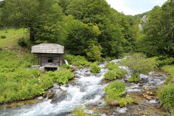 Románia legbővebb vízhozamú forrása a Cserna, vízhozama másodpercenként 2 m3