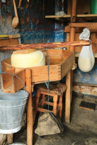 A juhsajt sajtolása az esztenán