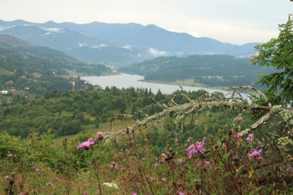 A Kolibica-tó