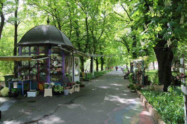 Hangulatos virágbolt a sétányon, a Szacsvay-szobor szomszédságában.