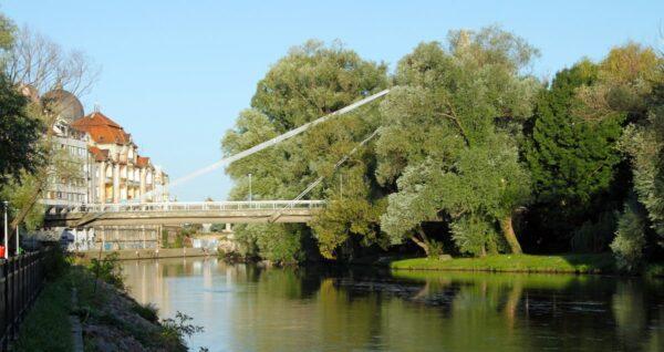 A Garasos-híd a sétány körösparti öreg nyárfáival